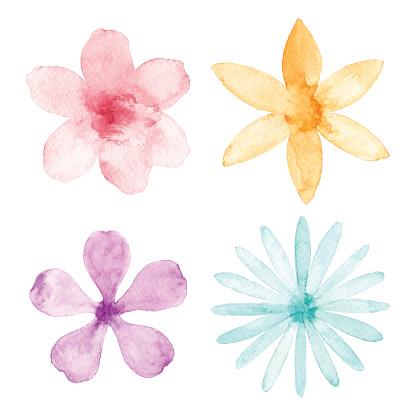 Watercolor Flowers - gettyimageskorea