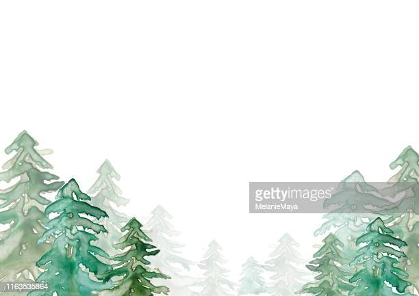 aquarell wald illustration - aquarellhintergrund stock-grafiken, -clipart, -cartoons und -symbole