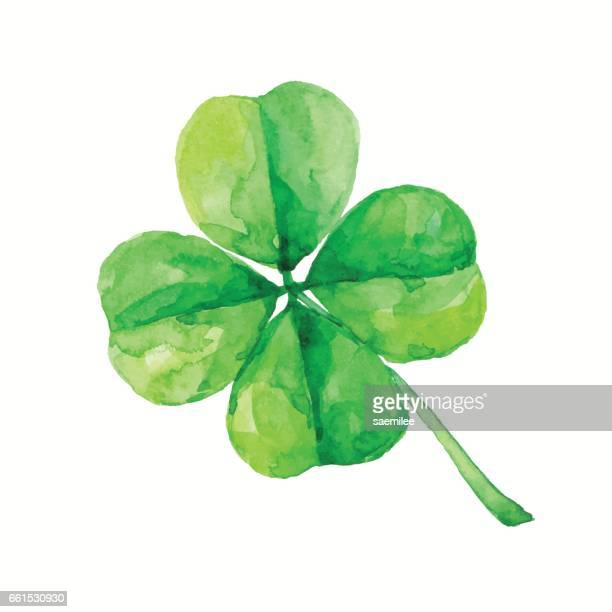 watercolor four leaf clover - day stock illustrations