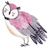 Watercolor funny kids illustration with owl