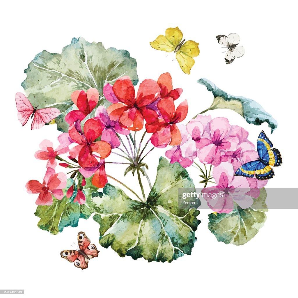 Watercolor geranium composition