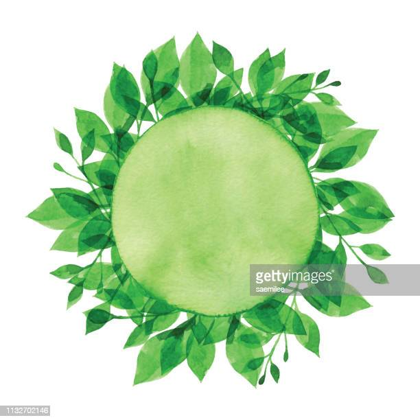 watercolor green branch and circle - springtime stock illustrations