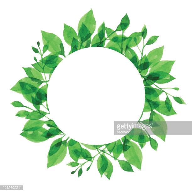 watercolor green branch frame with white circle - branch plant part stock illustrations