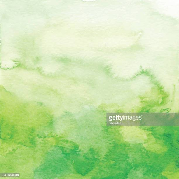 Watercolor Green Ombre Backdrop