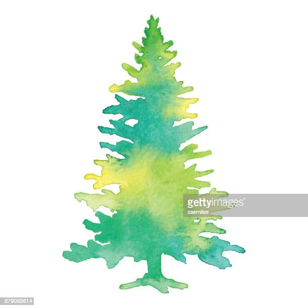 Watercolor Green Pine Tree