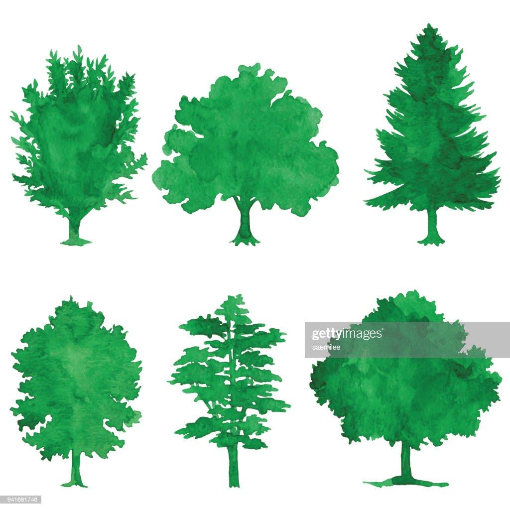 Watercolor Green Trees : stock illustration