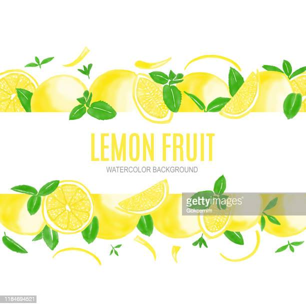 watercolor hand painted lemons and fresh mint leaves isolated on white background. spring, summer concept background. - lemonade stock illustrations