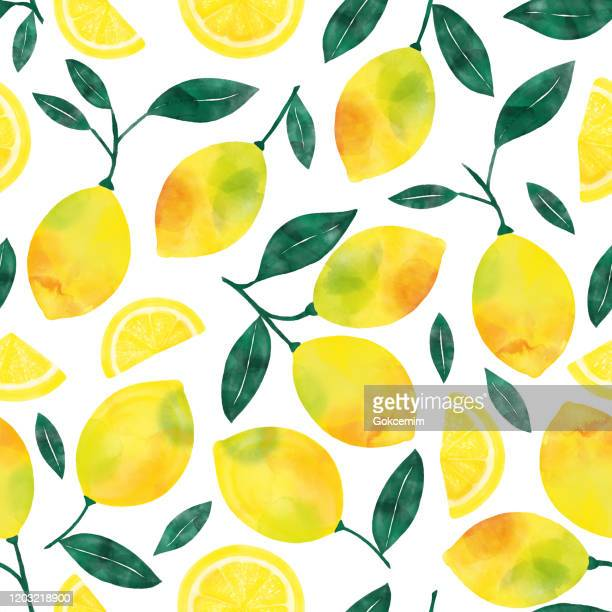 watercolor hand painted lemons and lemon slices seamless pattern. spring, summer concept background. - citrus fruit stock illustrations