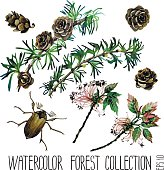 Watercolor insects among larch cones and foliage
