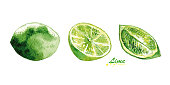 Watercolor lime and lime slices