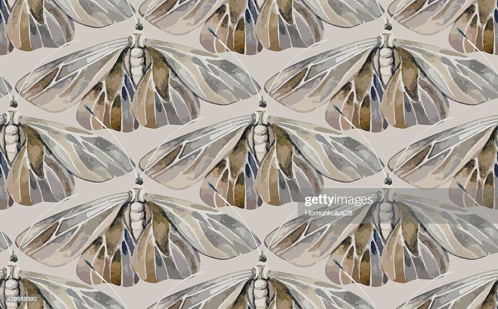 Watercolor moth.
