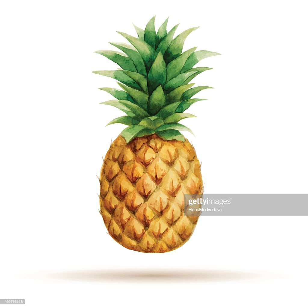 A watercolor painting of a pineapple, isolated on white