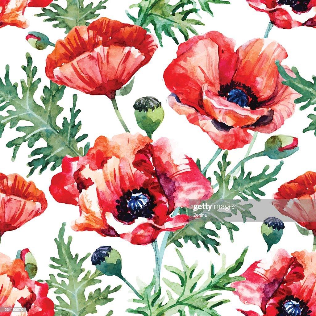 Watercolor Poppy Flower Pattern Vector Art Getty Images