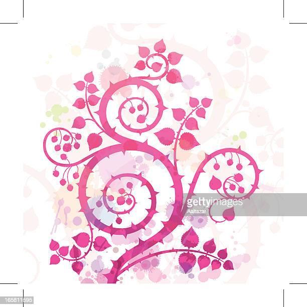 bildbanksillustrationer, clip art samt tecknat material och ikoner med watercolor raspberry swirl - taggig buske