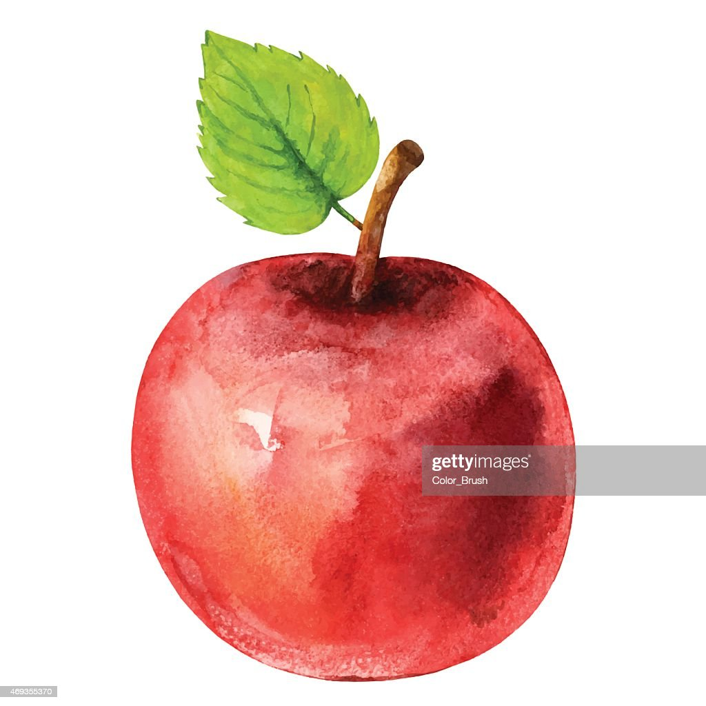 Watercolor red apple fruit with leaf closeup isolated