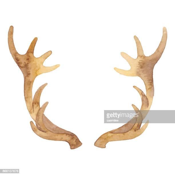 Watercolor Reindeer Horn