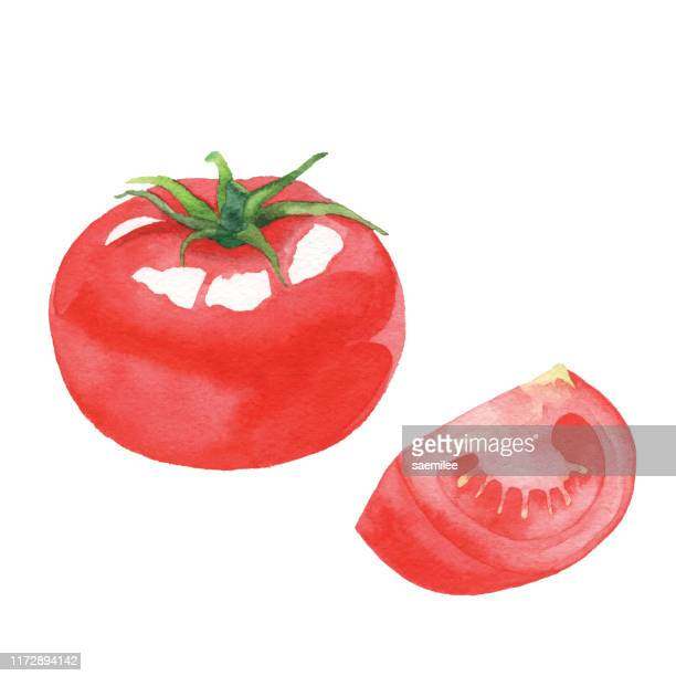 水彩トマト - トマト点のイラスト素材/クリップアート素材/マンガ素材/アイコン素材