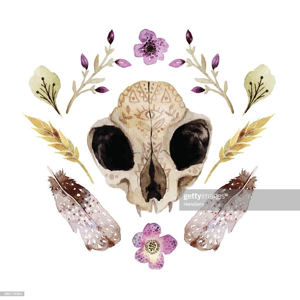 Watercolor  vector boho illustration with skull