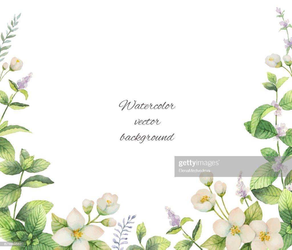 Aquarell Vektor Rahmen Von Blumen Und Zweige Jasmine Isoliert Auf ...