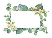 Watercolor vector green floral card with eucalyptus leaves, Jasmine flowers and branches isolated on white background.