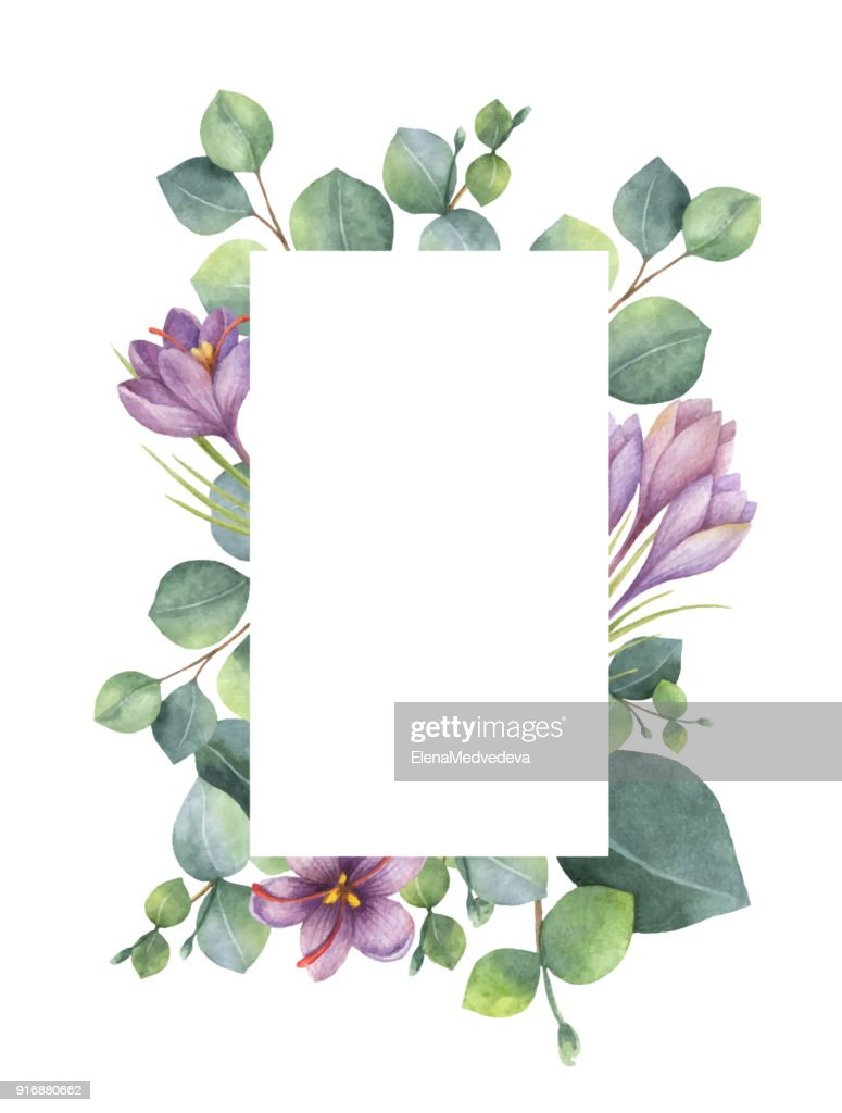 Watercolor vector green floral card with eucalyptus leaves, purple flowers and branches isolated on white background.