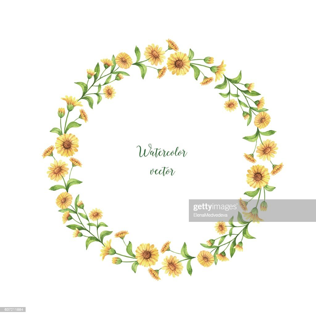 Watercolor vector round frame of calendula, marigold .