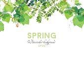 Watercolor vector spring background