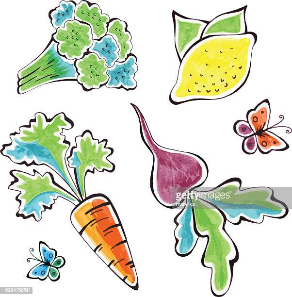 watercolor vegetables - common beet stock illustrations, clip art, cartoons, & icons