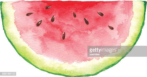 watercolor watermelon slice - juicy stock illustrations, clip art, cartoons, & icons