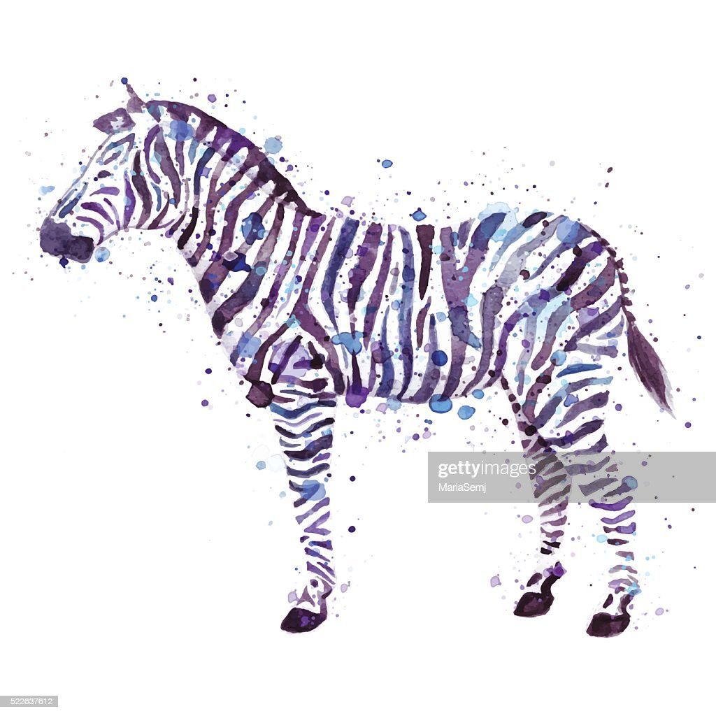 Watercolor zebra
