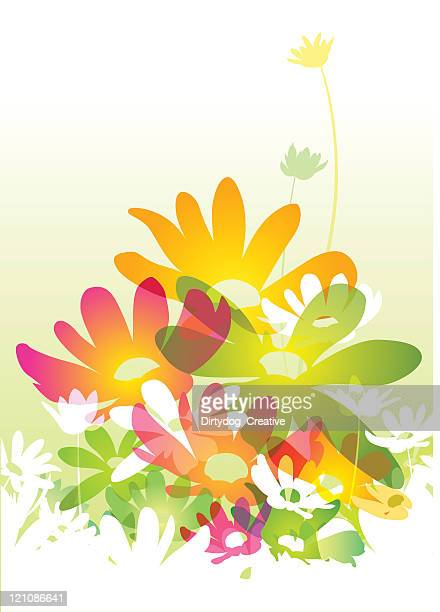 watercolour flowers - buttercup stock illustrations, clip art, cartoons, & icons