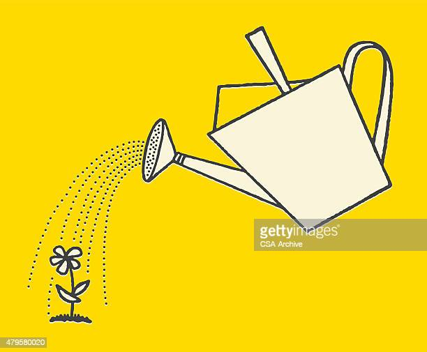 watering can and flower - watering can stock illustrations
