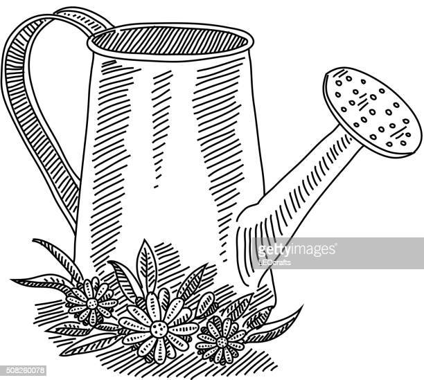 watering can with flowers drawing - watering can stock illustrations, clip art, cartoons, & icons