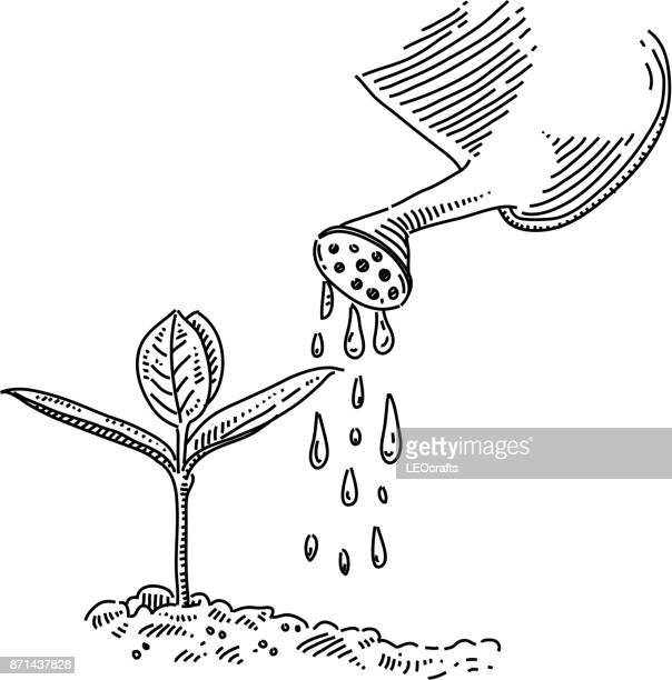 watering drawing - watering can stock illustrations
