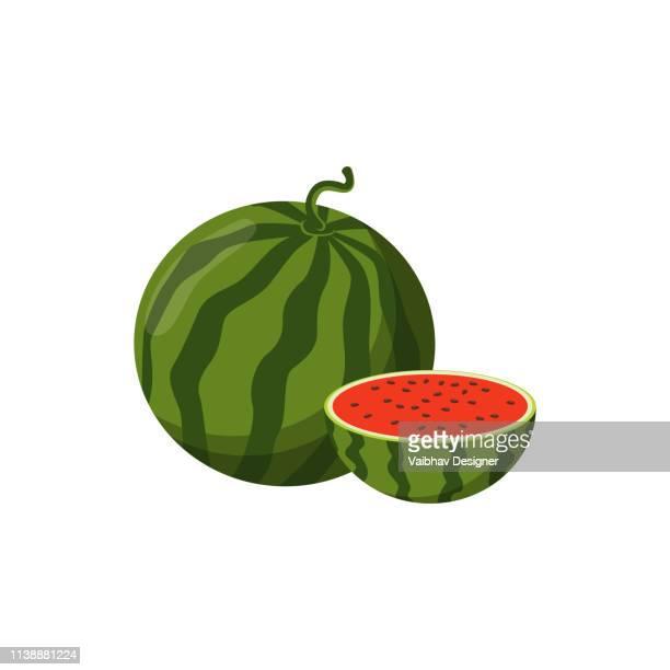Watermelon - Illustration