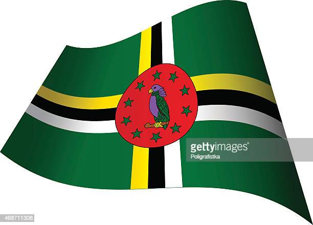 waving flag of dominica - dominican republic flag stock illustrations