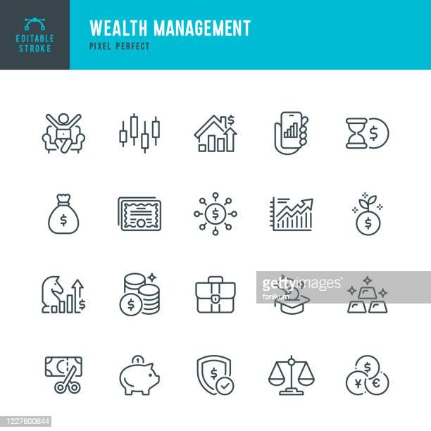wealth management - thin line vector icon set. pixel perfect. the set contains icons: stock market data, gold, business strategy, piggy bank, investment, economy, tax. - currency exchange stock illustrations
