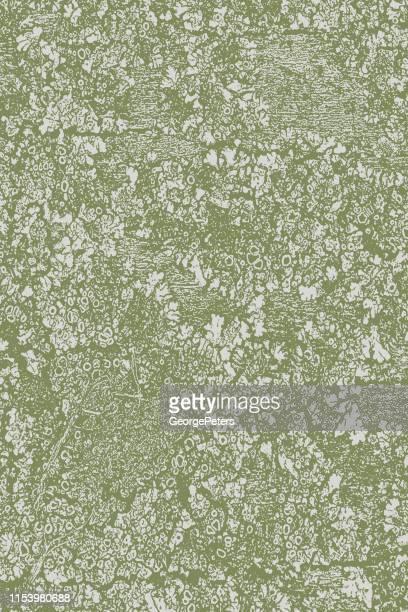 木の背景を苔の苔と質感で風化 - カーキグリーン点のイラスト素材/クリップアート素材/マンガ素材/アイコン素材