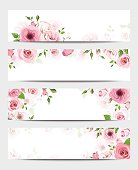 Web banners with pink roses. Vector eps-10.