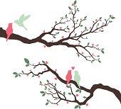 Wedding Invitation with love bird- Illustration