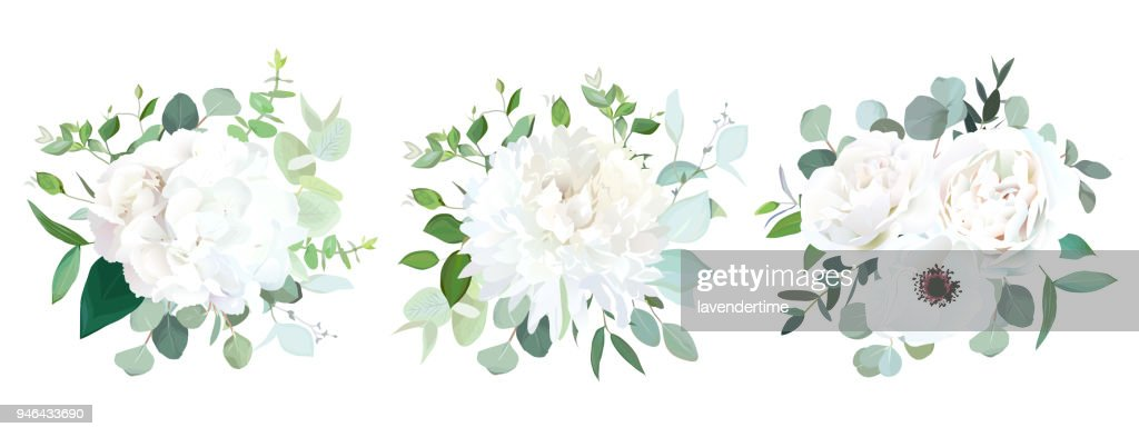Wedding white flowers vector design bouquets