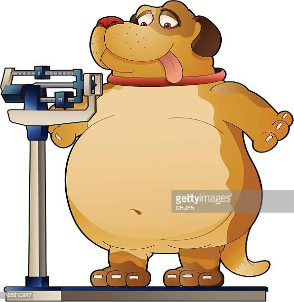 weight concerns - heavy stock illustrations, clip art, cartoons, & icons