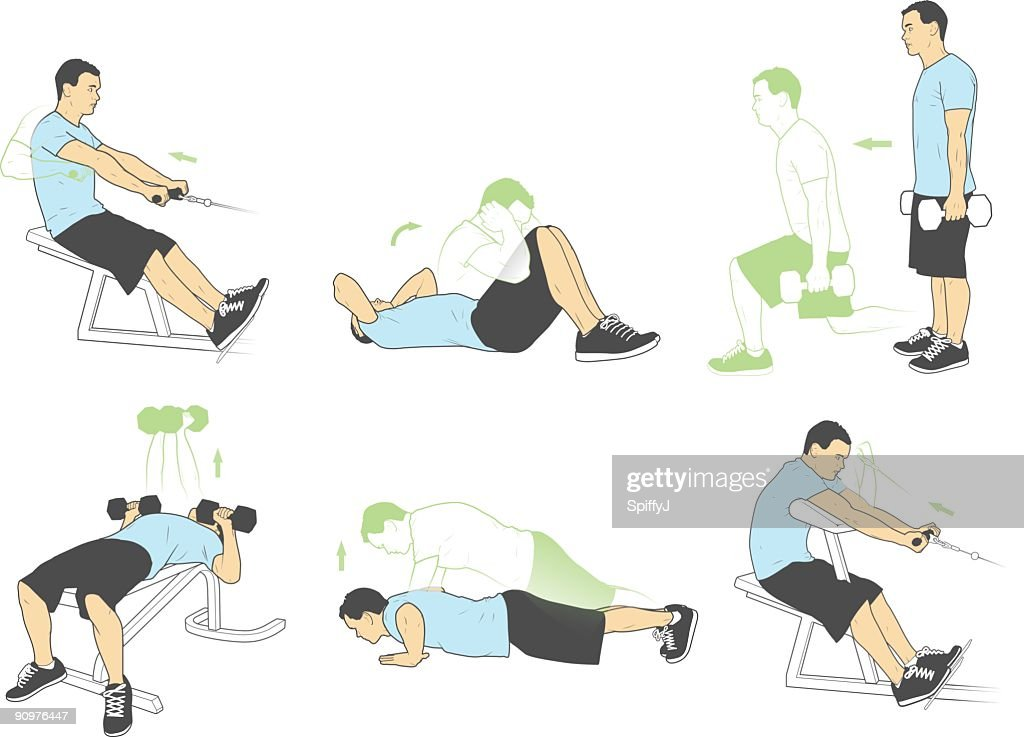 Weightlifting and exercises (Vector) : stock illustration