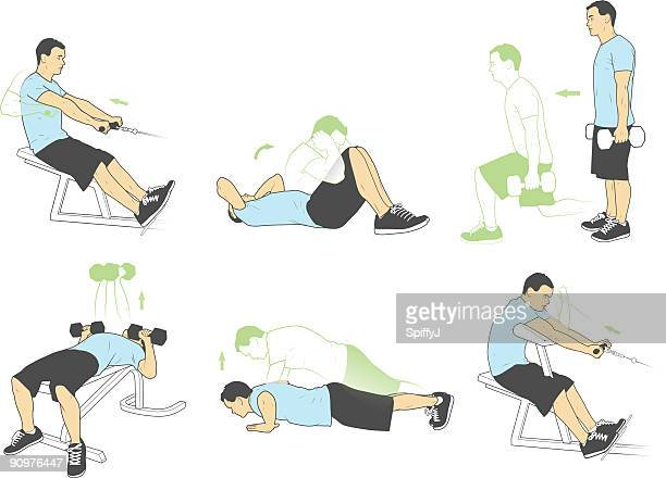 weightlifting and exercises (vector) - abdominal muscle stock illustrations, clip art, cartoons, & icons