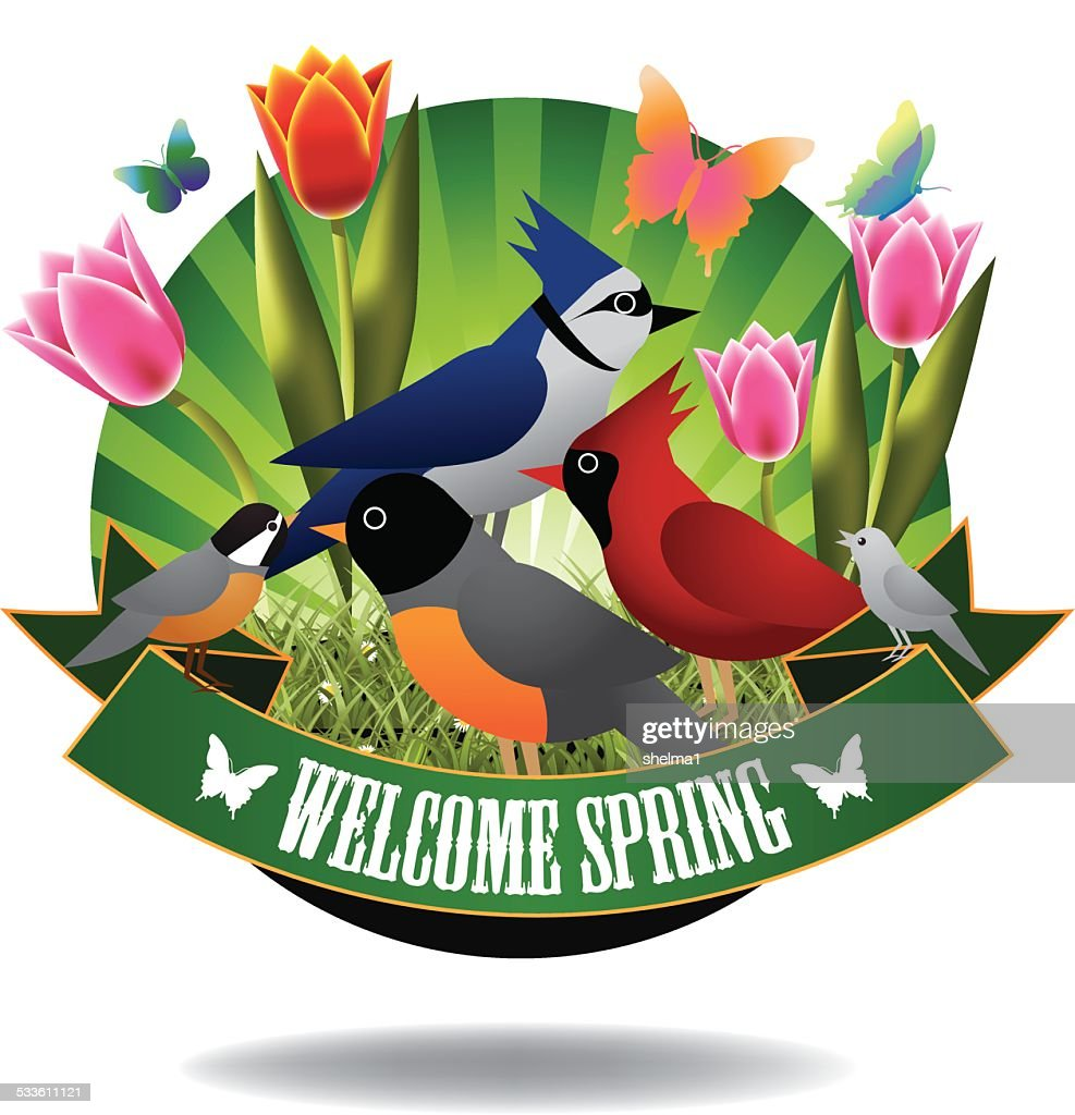 Welcome spring birds and tulips burst icon