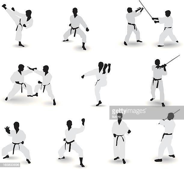 Conocida de artes marciales