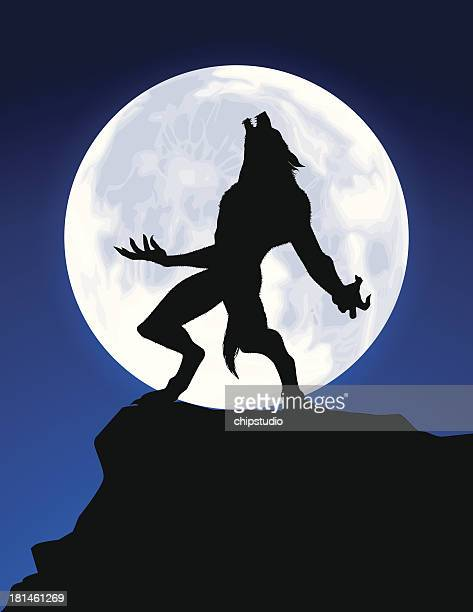 werewolf howl - howling stock illustrations, clip art, cartoons, & icons