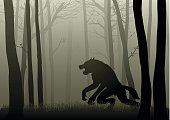 Werewolf In The Dark Woods