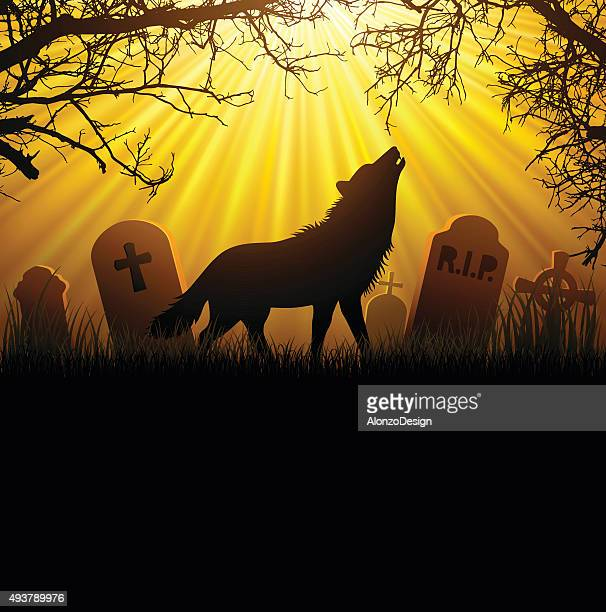 werewolf - howling stock illustrations, clip art, cartoons, & icons
