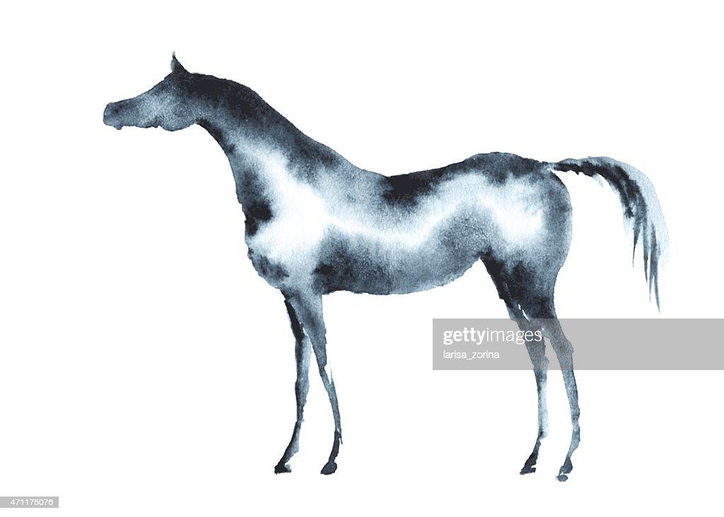 Wet watercolor arabian horse